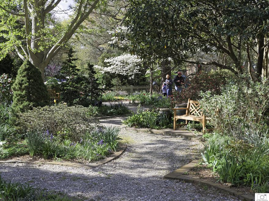 <h3>Adams Garden - April 2016</h3>
