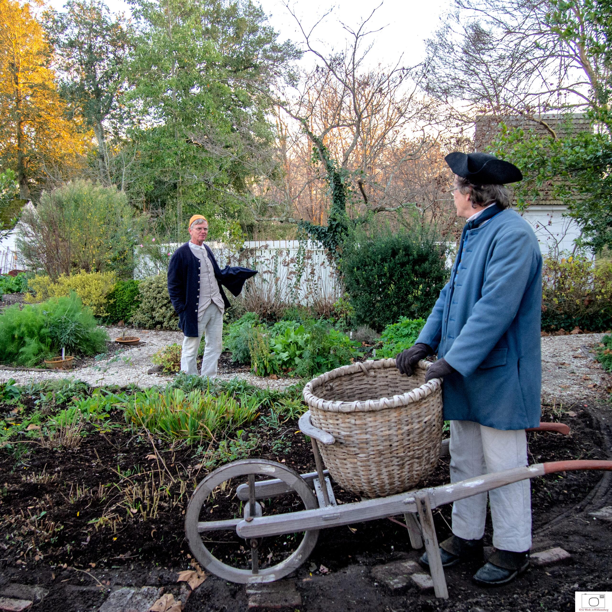 Preparing the gardens for winter -- December, 2011